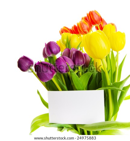 bouquet of  tulips with a blank gift card - stock photo