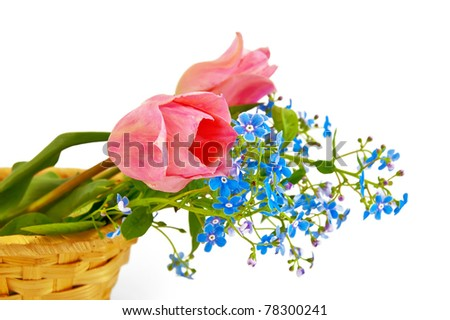 Bouquet of two pink tulips and blue field flowers in a wicker basket isolated on a white background