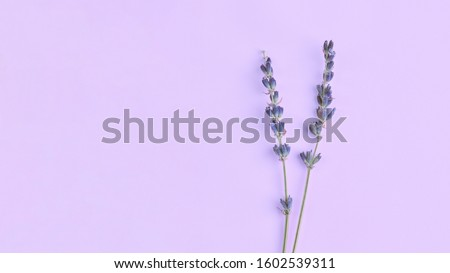 bouquet of violet lilac purple lavender flowers arranged on table background. Top view, flat lay mock up, copy space. Minimal background concept. Dry flower floral composition isolated. Spa skin care Foto stock ©
