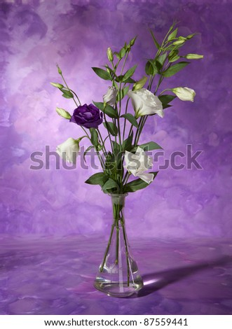 bouquet of white and violet lisianthus in a vase. Still life. eustoma