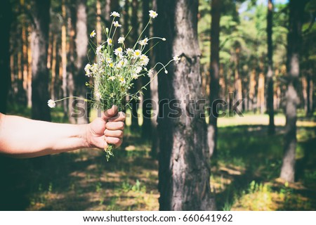 bouquet of white daisies in a...