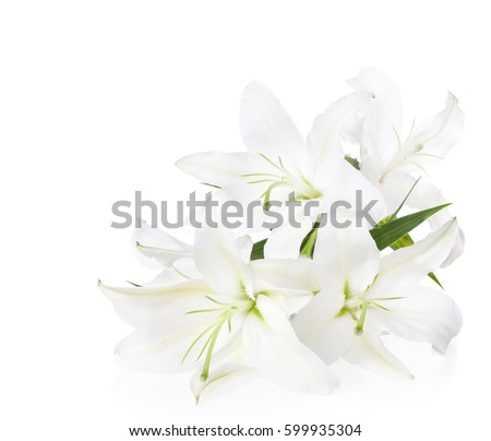 Shutterstock Bouquet of white lilies  ( isolated on white background).