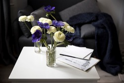 Bouquet of white ranunculus and blue anemone in the vase on a white coffee table near sofa with plaid. The books and journal. Shadow