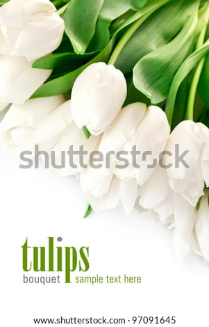 bouquet of white tulips with green leaves isolated on white background