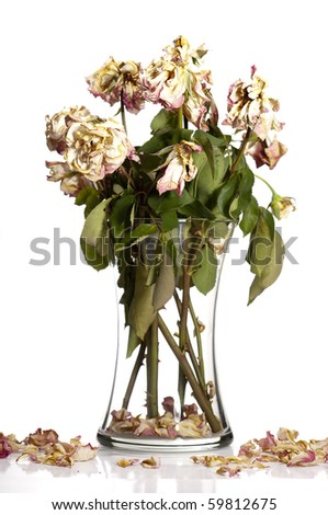Bouquet of withered roses in glass vase.