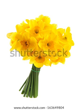 bouquet of yellow daffodils....