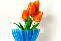 Bouquet orange tulips in a blue vase on white background. A gift to a woman's day.