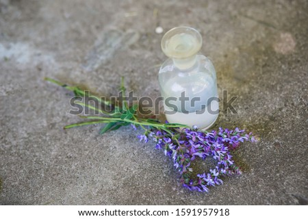 bouquet Salvia pratensis, meadow clary or meadow sage purple flowers near bottle of medicine on a concrete background. Collection of herbs. Medicines from medicinal plants. concept of Medici