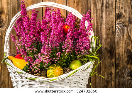 Bouquet with flower of heather and pumpkins, autumn decoration for thanksgiving day and halloween #324702860