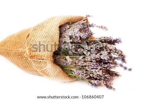bouquets of lavender placed in a canvas bag