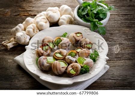 bourguignonne snail au gratin - stock photo