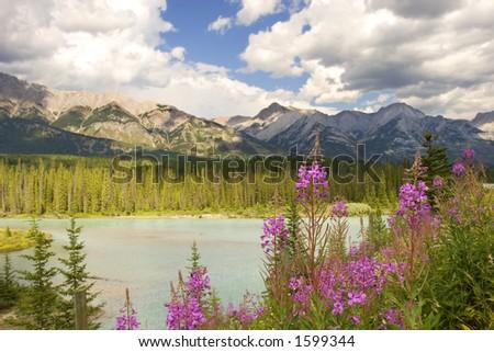 Bow river scene in Banff