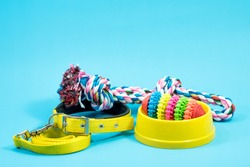 Bowl, collar with toy rope and bite rope for blue background. Product image for pet supplies.
