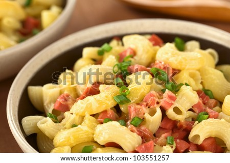 Bowl full of fresh homemade elbow macaroni pasta with sausage pieces, grated cheese and green onion (Selective Focus, Focus one third into the bowl)