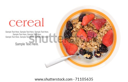 Bowl of Cereal and Fruit with Text Space to the left.