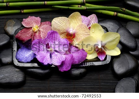 Bowl of Colorful orchid flower with black stones and bamboo grove on mat