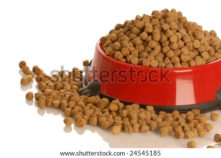 bowl of dog kibble overflowing in dog dish isolated on white background