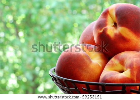 Bowl of fresh peaches with summer foliage in background.  Macro with shallow dof.