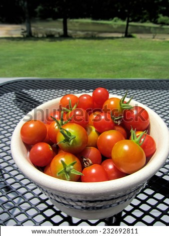 Bowl of Fresh Picked Cherry Tomatoes/Bowl of Fresh Picked Cherry Tomatoes 2 /Bowl of Fresh Picked Cherry Tomatoes
