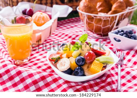 Bowl of fresh tropical fruit salad at a picnic served with a glass of orange juice, fresh fruit and croissants on a red and white checked tablecloth in summer sunshine