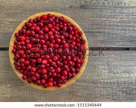 Bowl of freshly picked cranberry, Stockholm, Sweden #1511340644