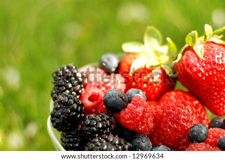 Bowl of mixed berries over a green summer background