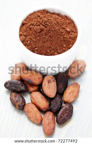 bowl of raw cocoa - food and drink  /shallow DOF/