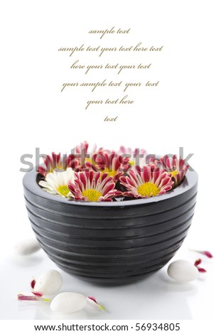 bowl of water and flowers over white with copyspace (with sample text)