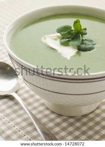 Bowl of Watercress Soup with Cr me Fraiche Photo stock ©