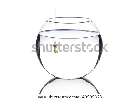 Bowl with a fishing hook inside isolated against white background