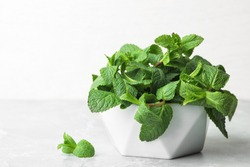 Bowl with fresh green mint on table. Space for text