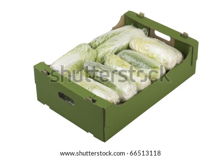 Box of fresh Chinese cabbage isolated on white background