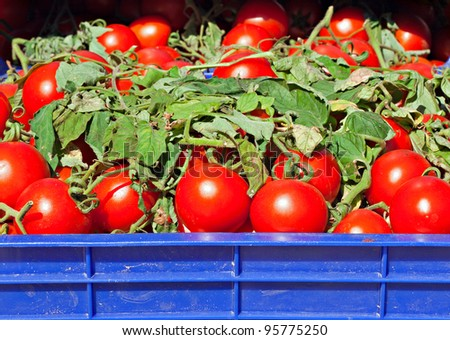Box of ripe red tomatoes at a streetmarket