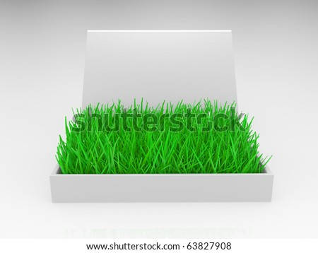Box with a grass on a white background. 3D an illustration