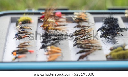 Box with fly-flies