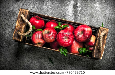 box with ripe red apples. On a rustic background.