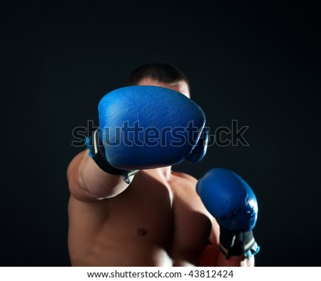 Boxer during his training