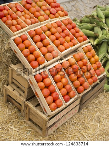 boxes of tomatoes, ripe and tasty fruits and vegetables at fair