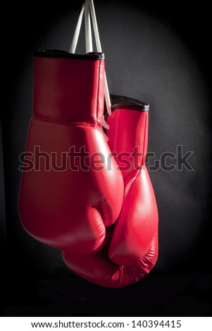 Boxing Glove Taken With a Full Frame Digital Camera