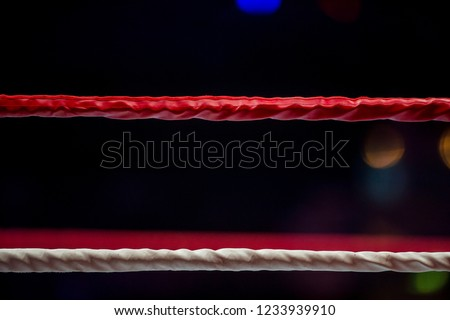 Boxing ring ropes with a blur spotlight #1233939910