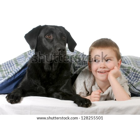 boy and dog - four year old boy and his dog in bed isolated on white background - stock photo