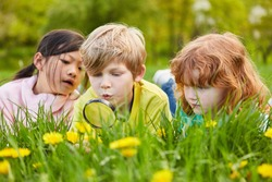 Boy and two girls discover nature and the environment with a magnifying glass