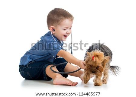 boy child examining dog puppy isolated on white background