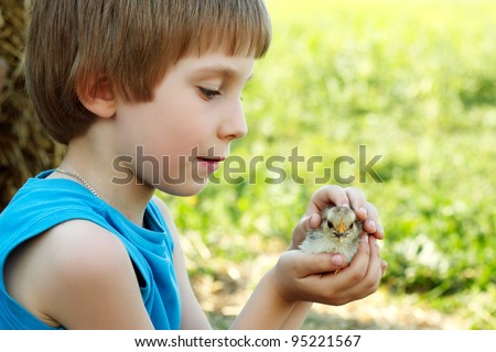 boy cute hugs chiken in hand nature summer sunny outdoor
