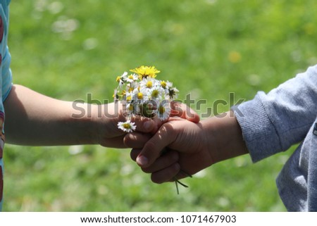free photos young boy giving a girl a flower from dandelion avopix com