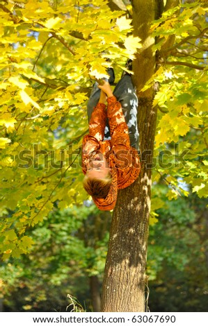 Boy hang on tree in autumn