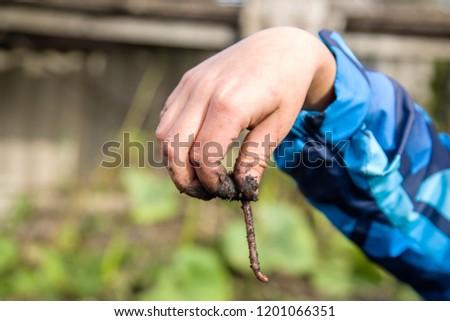 boy holding a worm