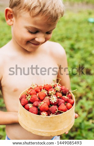 Boy holding colander filled with freshly picked strawberries