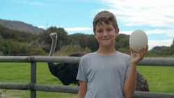 Boy holding ostrich egg at ostrich farm.