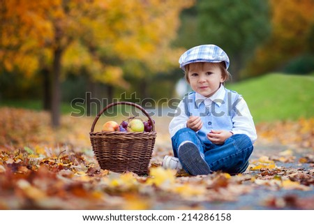 Boy in a park with leaves and basket of fruits